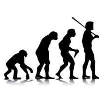 मनुष्य विकास क्या सचमुच बंदर से हुआ है?